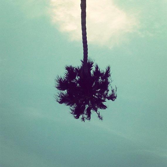 palm-handstand-instagram